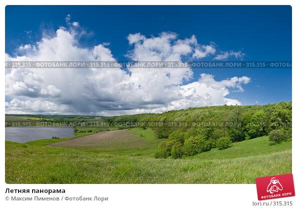 Летняя панорама, фото № 315315, снято 15 мая 2008 г. (c) Максим Пименов / Фотобанк Лори