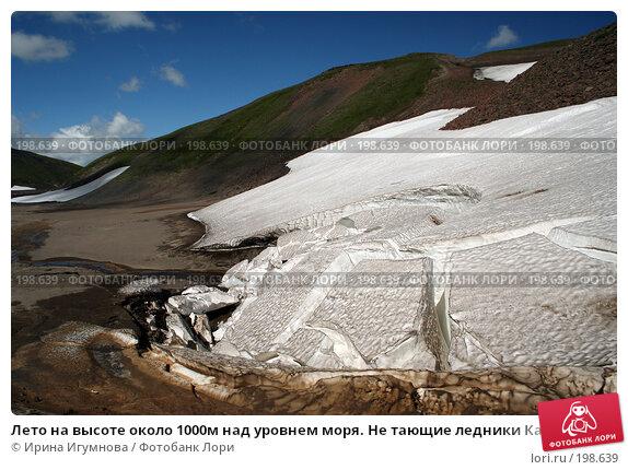 Лето на высоте около 1000м над уровнем моря. Не тающие ледники Камчатки, фото № 198639, снято 27 августа 2005 г. (c) Ирина Игумнова / Фотобанк Лори
