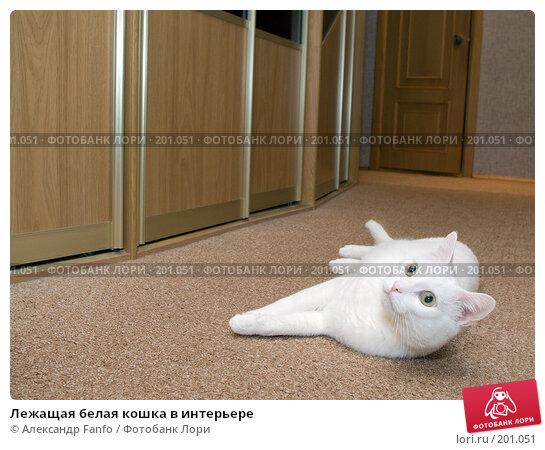 Лежащая белая кошка в интерьере, фото № 201051, снято 18 января 2017 г. (c) Александр Fanfo / Фотобанк Лори