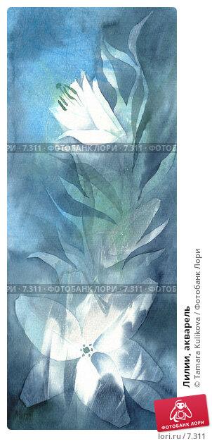 Лилии, акварель, иллюстрация № 7311 (c) Tamara Kulikova / Фотобанк Лори