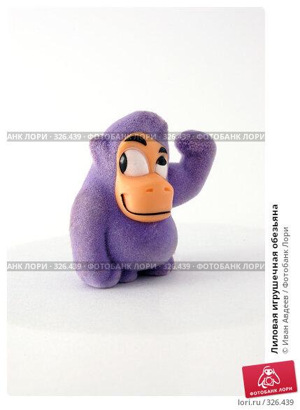 Лиловая игрушечная обезьяна, фото № 326439, снято 6 июня 2008 г. (c) Иван Авдеев / Фотобанк Лори