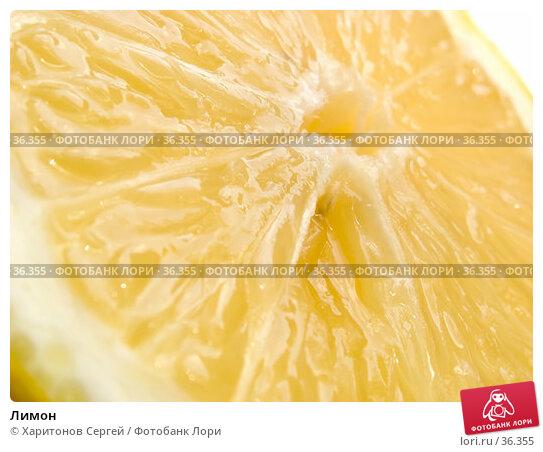 Купить «Лимон», фото № 36355, снято 26 апреля 2007 г. (c) Харитонов Сергей / Фотобанк Лори