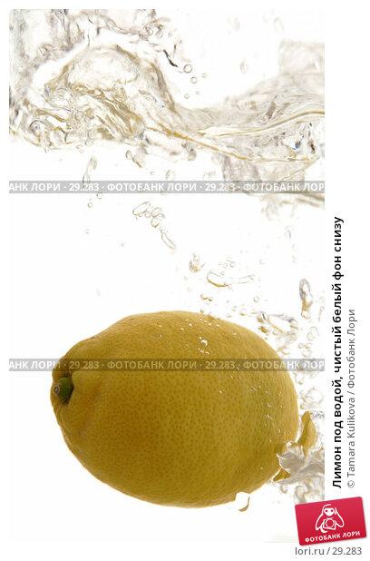 Лимон под водой, чистый белый фон снизу, фото № 29283, снято 2 апреля 2007 г. (c) Tamara Kulikova / Фотобанк Лори