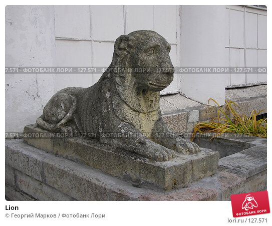 Lion, фото № 127571, снято 10 октября 2004 г. (c) Георгий Марков / Фотобанк Лори