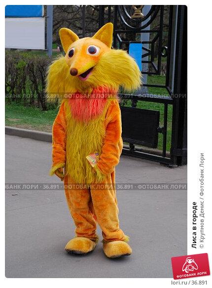 Купить «Лиса в городе», фото № 36891, снято 29 марта 2007 г. (c) Крупнов Денис / Фотобанк Лори
