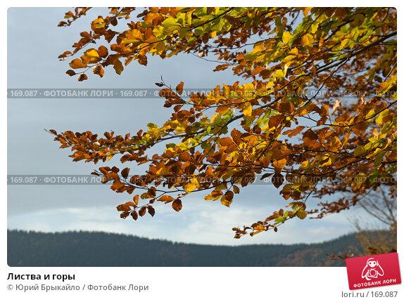 Листва и горы, фото № 169087, снято 5 октября 2007 г. (c) Юрий Брыкайло / Фотобанк Лори