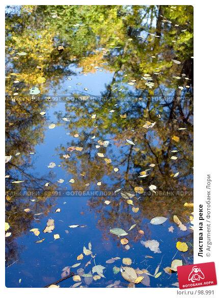 Листва на реке, фото № 98991, снято 30 сентября 2007 г. (c) Argument / Фотобанк Лори