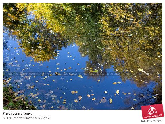 Купить «Листва на реке», фото № 98995, снято 30 сентября 2007 г. (c) Argument / Фотобанк Лори
