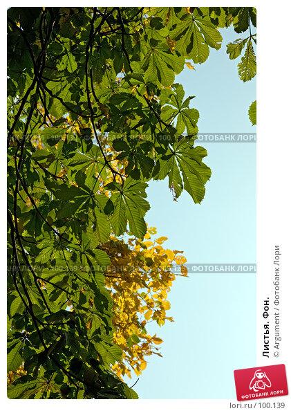Листья. Фон., фото № 100139, снято 30 сентября 2007 г. (c) Argument / Фотобанк Лори