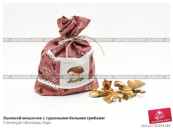Льняной мешочек с сушеными белыми грибами. Стоковое фото, фотограф Dmitry29 / Фотобанк Лори