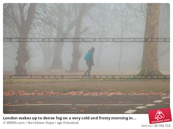 Купить «London wakes up to dense fog on a very cold and frosty morning in Finsbury Park, north London. Where: London, United Kingdom When: 28 Dec 2016 Credit: WENN.com», фото № 28700723, снято 28 декабря 2016 г. (c) age Fotostock / Фотобанк Лори