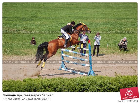 Лошадь прыгает через барьер, фото № 272015, снято 1 мая 2006 г. (c) Илья Лиманов / Фотобанк Лори