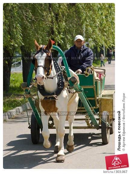 Лошадь с повозкой, фото № 303067, снято 4 мая 2008 г. (c) Артем Ефимов / Фотобанк Лори