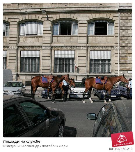 Лошади на службе, фото № 180219, снято 3 мая 2007 г. (c) Федюнин Александр / Фотобанк Лори