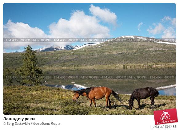 Лошади у реки, фото № 134435, снято 30 июня 2006 г. (c) Serg Zastavkin / Фотобанк Лори