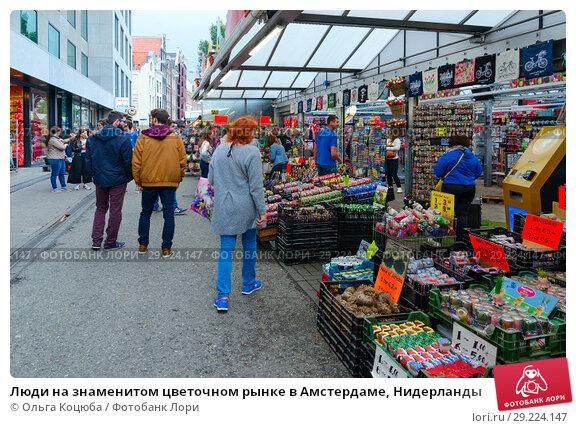 Купить «Люди на знаменитом цветочном рынке в Амстердаме, Нидерланды», фото № 29224147, снято 6 сентября 2018 г. (c) Ольга Коцюба / Фотобанк Лори