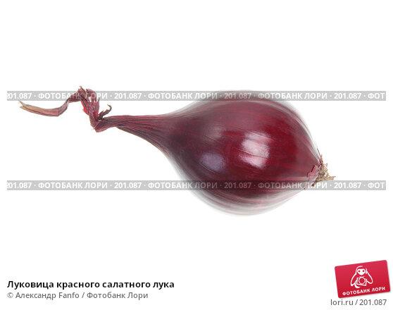 Луковица красного салатного лука, фото № 201087, снято 27 июля 2017 г. (c) Александр Fanfo / Фотобанк Лори
