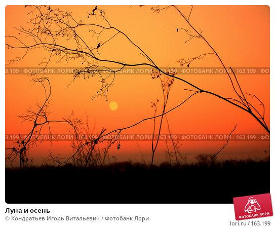 Луна и осень, фото № 163199, снято 4 ноября 2006 г. (c) Кондратьев Игорь Витальевич / Фотобанк Лори