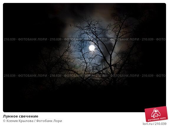 Купить «Лунное свечение», фото № 210039, снято 19 февраля 2008 г. (c) Ксения Крылова / Фотобанк Лори