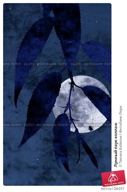 Лунный паук коллаж, иллюстрация № 24011 (c) Tamara Kulikova / Фотобанк Лори