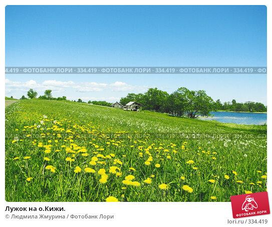 Лужок на о.Кижи., фото № 334419, снято 17 июня 2008 г. (c) Людмила Жмурина / Фотобанк Лори