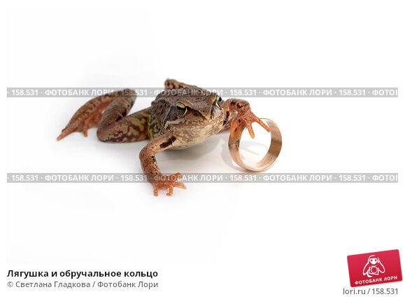 Лягушка и обручальное кольцо, фото № 158531, снято 7 июля 2007 г. (c) Cветлана Гладкова / Фотобанк Лори