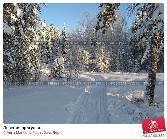 Купить «Лыжная прогулка», фото № 188839, снято 27 января 2008 г. (c) Anna Marklund / Фотобанк Лори