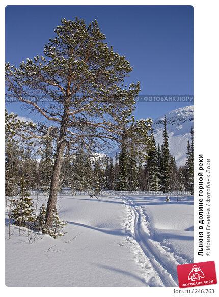 Лыжня в долине горной реки, фото № 246763, снято 25 марта 2008 г. (c) Ирина Еськина / Фотобанк Лори