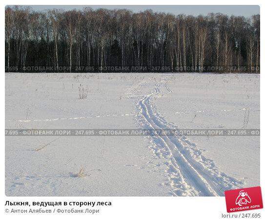 Лыжня, ведущая в сторону леса, фото № 247695, снято 21 февраля 2008 г. (c) Антон Алябьев / Фотобанк Лори
