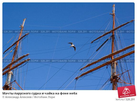 Мачты парусного судна и чайка на фоне неба, эксклюзивное фото № 328291, снято 19 июня 2008 г. (c) Александр Алексеев / Фотобанк Лори