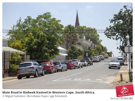 Main Road in Riebeek Kasteel in Western Cape, South Africa. Стоковое фото, фотограф Miguel Sobreira / age Fotostock / Фотобанк Лори