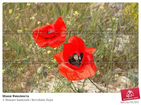 Маки Фиолента, фото № 51511, снято 20 мая 2007 г. (c) Михаил Баевский / Фотобанк Лори