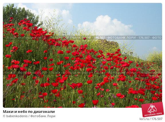 Маки и небо по диагонали, фото № 176507, снято 7 мая 2006 г. (c) Бабенко Денис Юрьевич / Фотобанк Лори