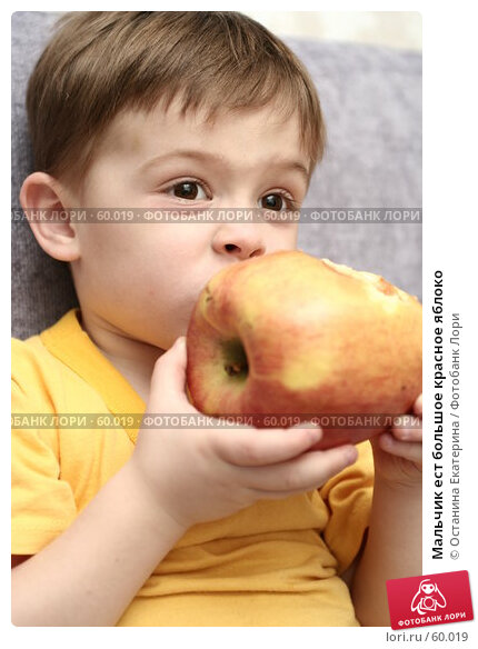 Мальчик ест большое красное яблоко, фото № 60019, снято 11 апреля 2007 г. (c) Останина Екатерина / Фотобанк Лори