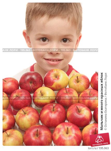 Мальчик и много красных яблок, фото № 195063, снято 10 октября 2007 г. (c) Останина Екатерина / Фотобанк Лори
