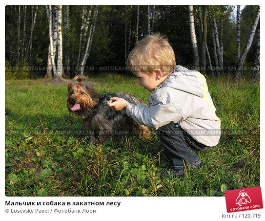 Мальчик и собака в закатном лесу, фото № 120719, снято 15 сентября 2005 г. (c) Losevsky Pavel / Фотобанк Лори