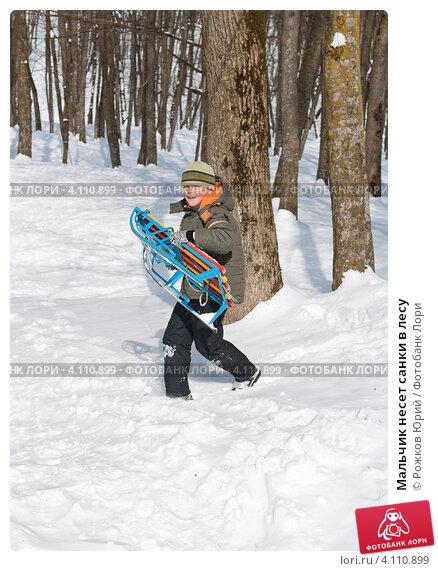 Купить «Мальчик несет санки в лесу», фото № 4110899, снято 8 марта 2012 г. (c) Рожков Юрий / Фотобанк Лори