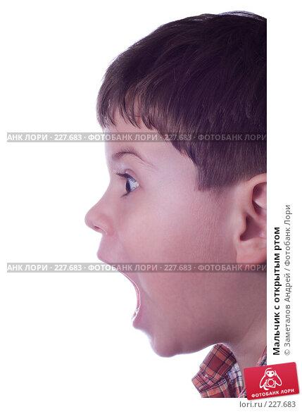 Мальчик с открытым ртом, фото № 227683, снято 20 марта 2008 г. (c) Заметалов Андрей / Фотобанк Лори