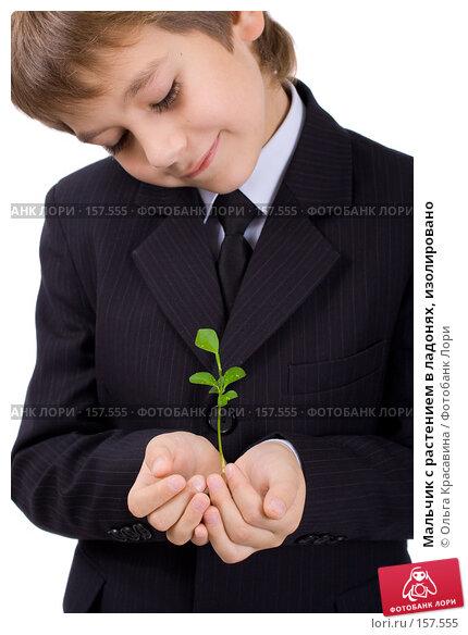 Мальчик с растением в ладонях, изолировано, фото № 157555, снято 21 октября 2007 г. (c) Ольга Красавина / Фотобанк Лори