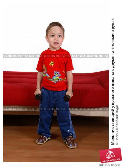 Купить «Мальчик стоящий у красного дивана с двумя гантелями в руках», фото № 88531, снято 4 июня 2007 г. (c) Harry / Фотобанк Лори