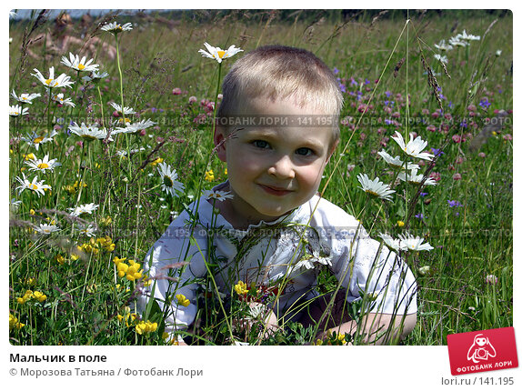 Мальчик в поле, фото № 141195, снято 9 июля 2004 г. (c) Морозова Татьяна / Фотобанк Лори