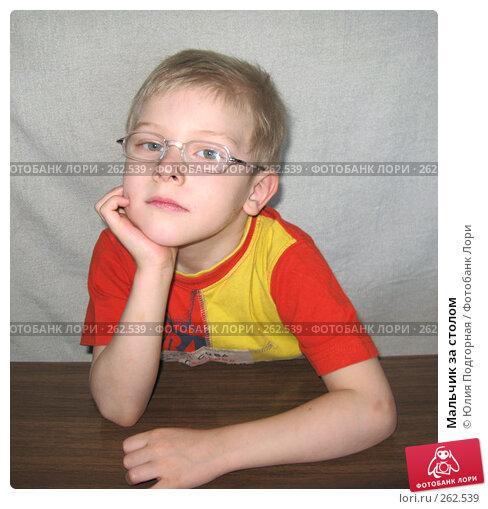 Купить «Мальчик за столом», фото № 262539, снято 12 апреля 2008 г. (c) Юлия Селезнева / Фотобанк Лори