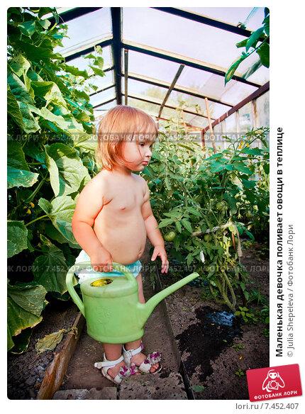 Купить «Маленькая девочка поливает овощи в теплице», фото № 7452407, снято 9 июля 2014 г. (c) Julia Shepeleva / Фотобанк Лори