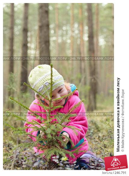 Купить «Маленькая девочка в хвойном лесу», фото № 246791, снято 30 марта 2008 г. (c) Майя Крученкова / Фотобанк Лори