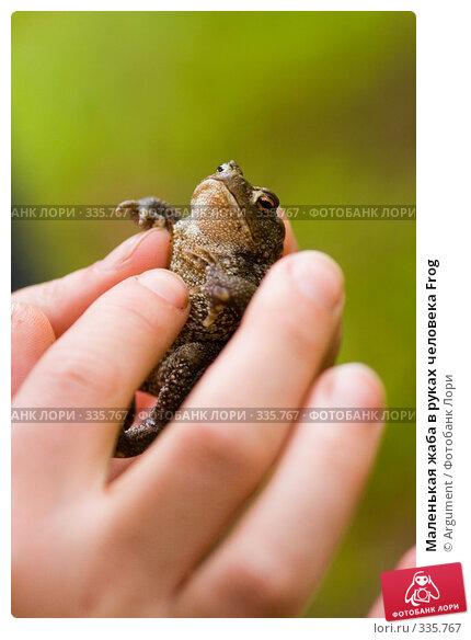 Маленькая жаба в руках человека Frog, фото № 335767, снято 24 июня 2008 г. (c) Argument / Фотобанк Лори