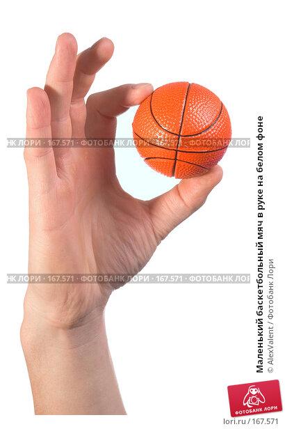 Маленький баскетбольный мяч в руке на белом фоне, фото № 167571, снято 26 октября 2016 г. (c) AlexValent / Фотобанк Лори