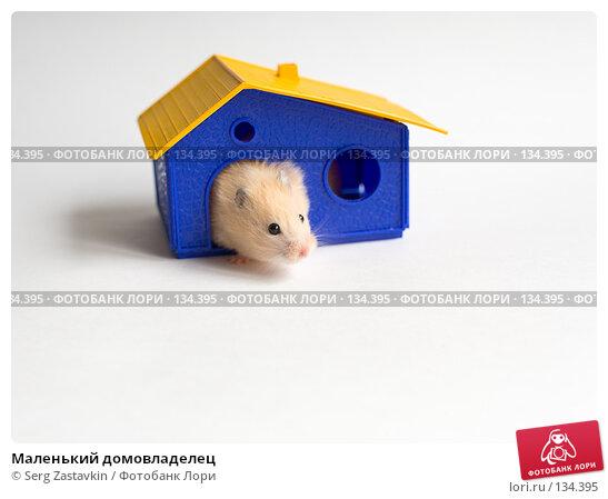 Маленький домовладелец, фото № 134395, снято 14 мая 2006 г. (c) Serg Zastavkin / Фотобанк Лори