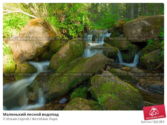 Купить «Маленький лесной водопад», фото № 322951, снято 14 июня 2008 г. (c) Ильин Сергей / Фотобанк Лори