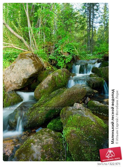 Маленький лесной водопад, фото № 322971, снято 14 июня 2008 г. (c) Ильин Сергей / Фотобанк Лори