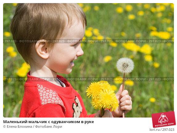Маленький мальчик с одуванчиком в руке, фото № 297023, снято 18 мая 2008 г. (c) Елена Блохина / Фотобанк Лори